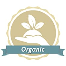 USDA Certified Organic Stomach Balm for Women & Men of All Ages - Heals & Protects Skin