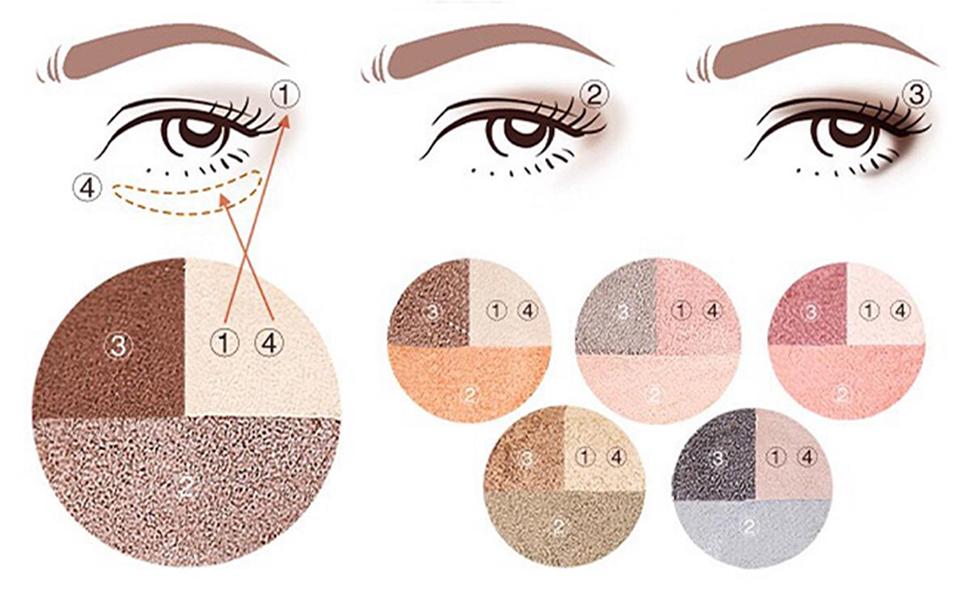 The method of apply eyeshadow