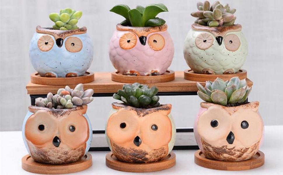 Yontree Ceramic Owl pot