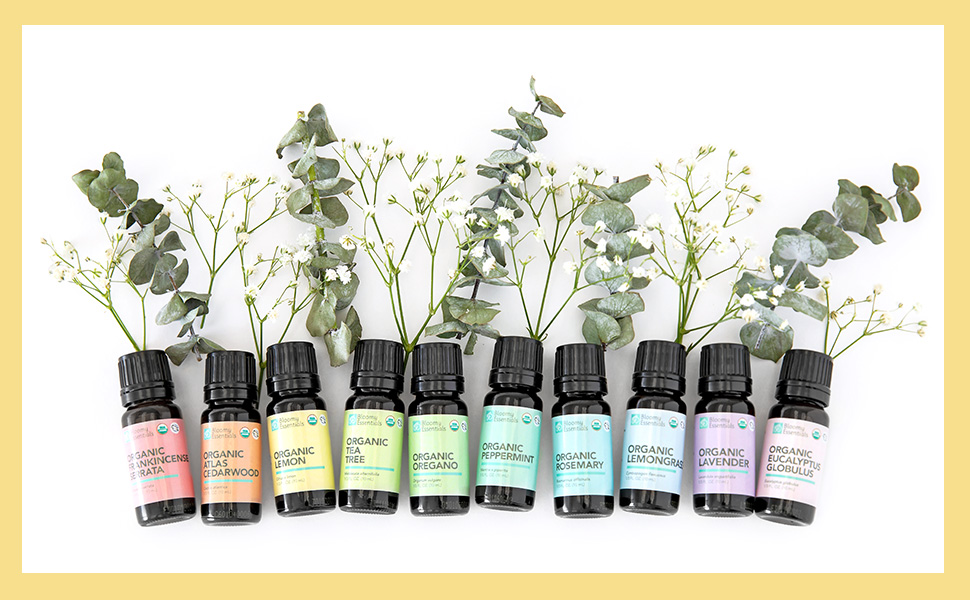 10 organic essential oils