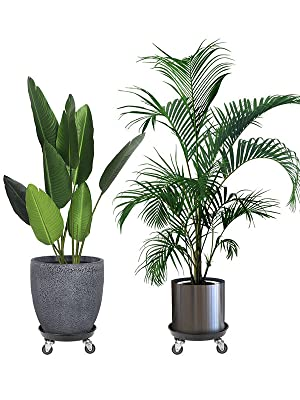 2pack plant caddies