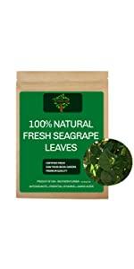 Fresh Seagrape Leaves, Fresh Seagrape tea