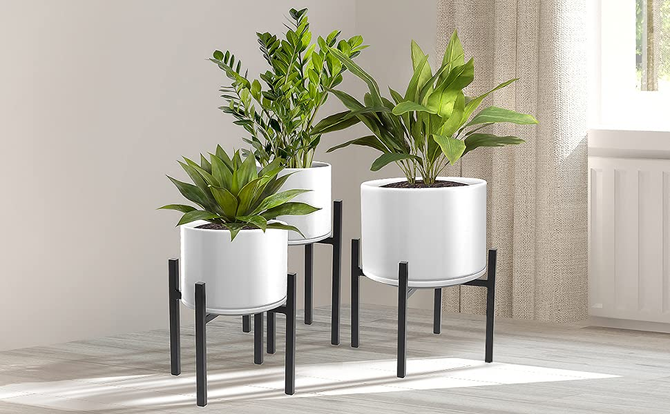 sorbus plant stands