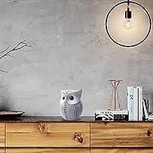White Dots Owl
