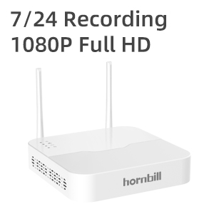 7/24 Video Recording