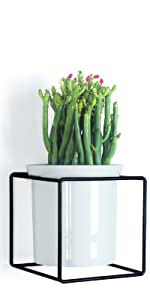 Wall Planter with Metal Holder