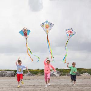Kite making kits