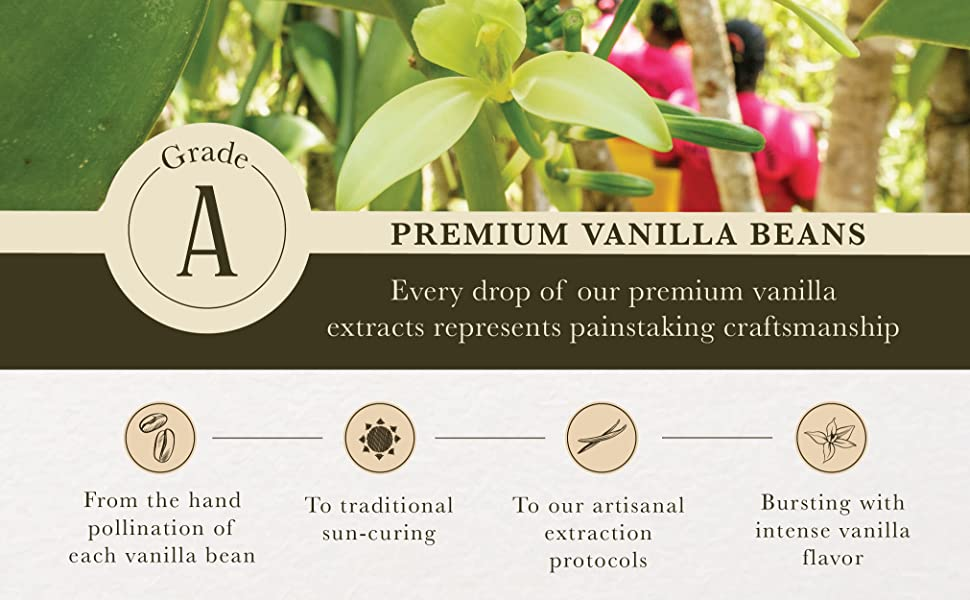 Grade A Premium Vanilla Beans