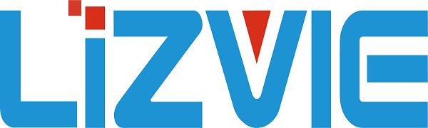 LIZVIE Motion Dectection Hidden Clock Camera