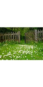 Spring Meadow Flower Backdrop