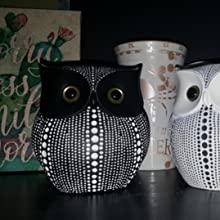 Black Dots Owl