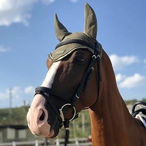 Horse Ear Bonnet-Green