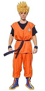 DBZ Goku Costume