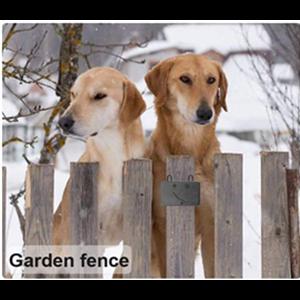 carden fence