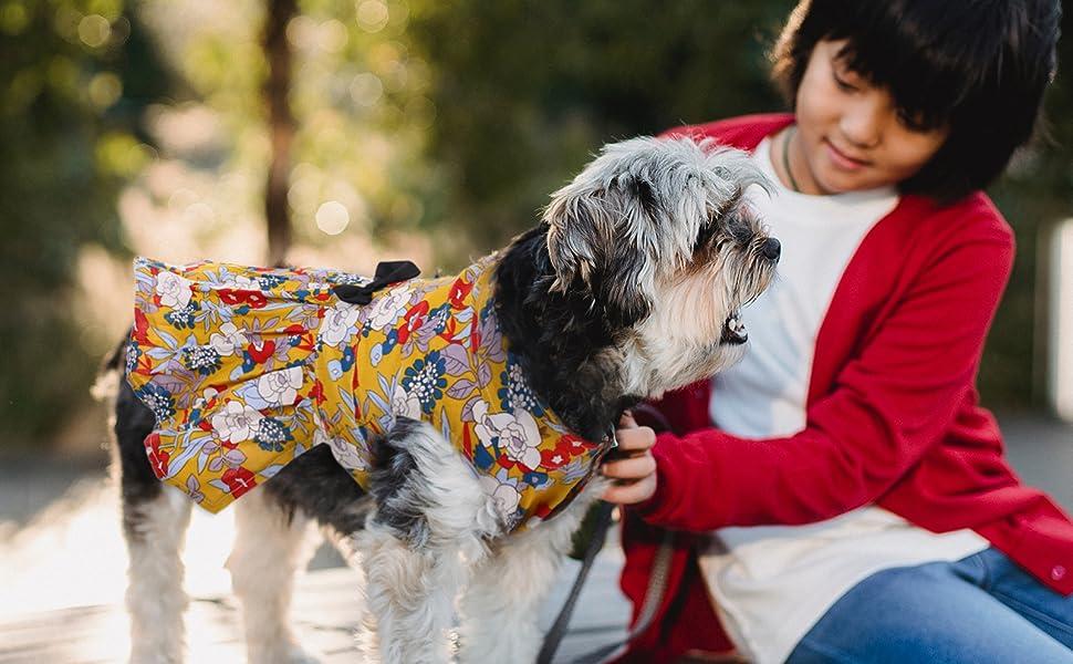 dog dress for small dog