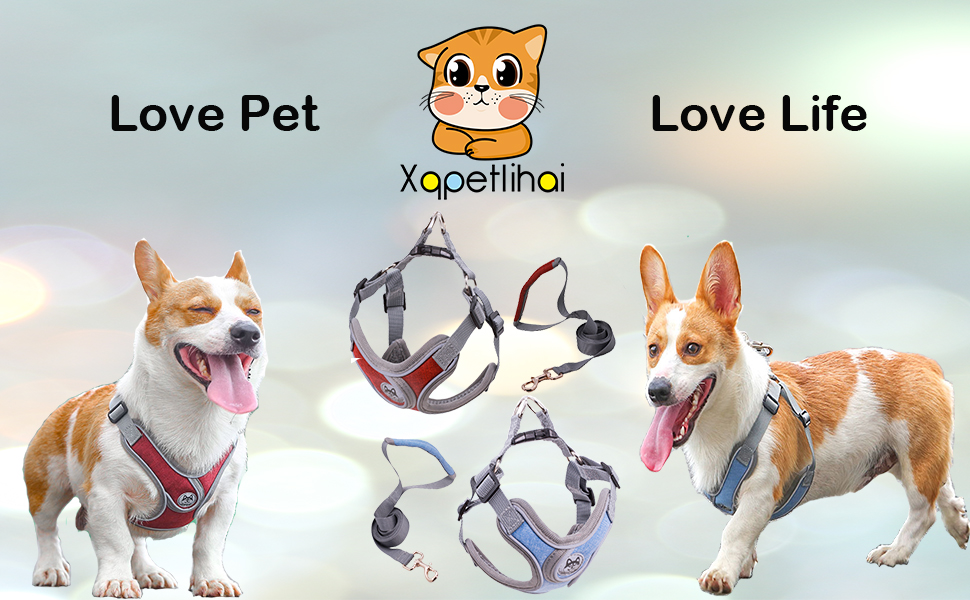 Xqpetlihai Dog harness X type blue&red