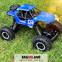 2.4Ghz Off Road RC Trucks with Two Rechargeable Batteries, Electric Toy Car for All Adults & Kids