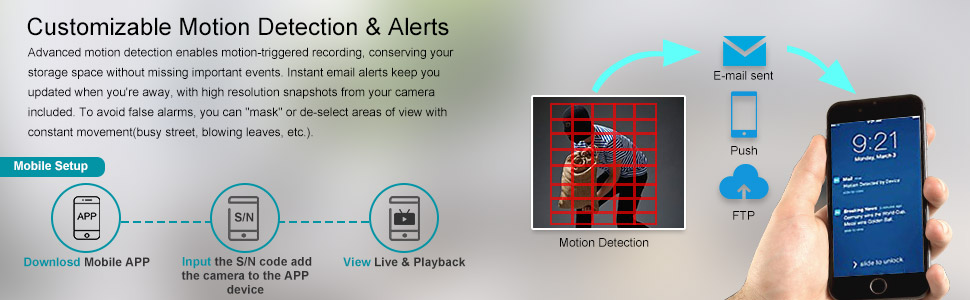 Motion Detect and Alerts