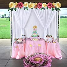Backdrop Curtain for Birthday
