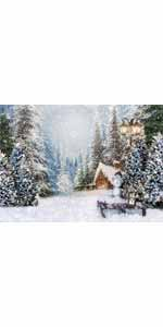snowy covered scene pine street lamp wallpaper snowing snowfall family children infant