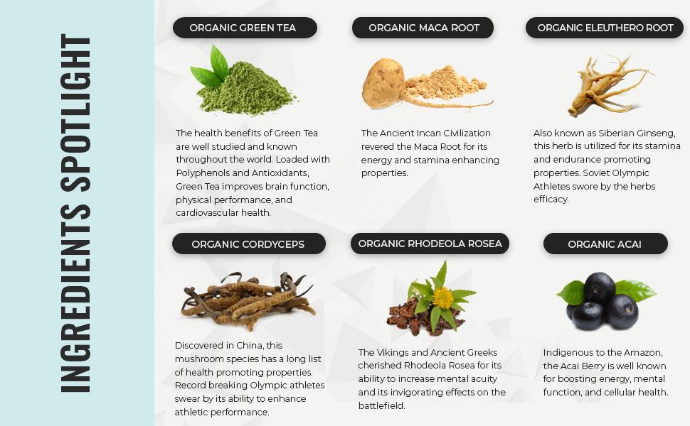 Organic Pre-Workout Ingredient Spotlight