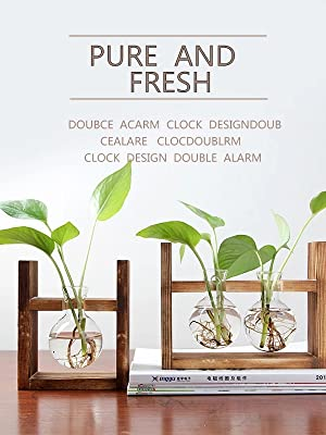 plants planter feaux plant pots table glass small vase pot stand in terrarium desk for