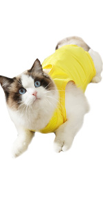 cat recovery suit