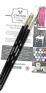 Art Fine Canvas Painting Paint brush details furniture metallic pointed annie sloan arts bundle set