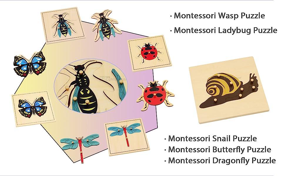 Elite Montessori botany puzzle