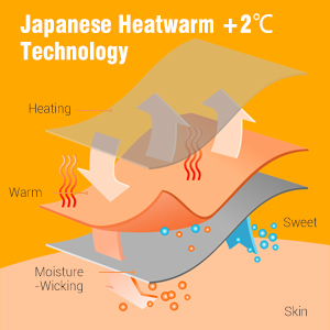 Japanese technology