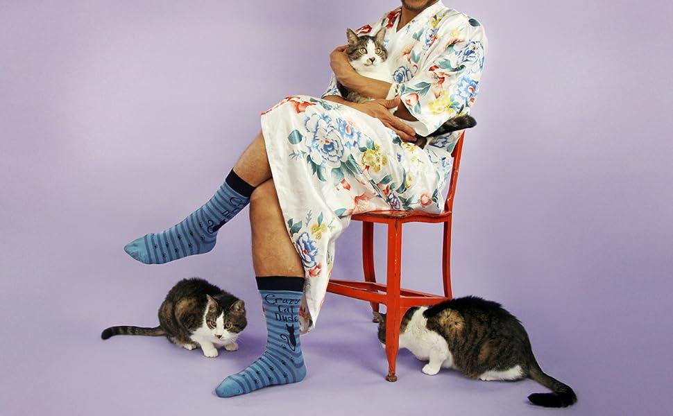 cats, kitty, kitties, cat, socks, crazy, cat, lady, dude