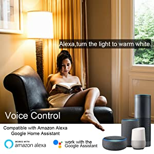 Compatible with Amazon Alea Google Home Assistant