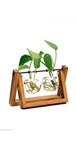Desk Accessories Glass Planter Bulb Vase with Retro Solid Wooden Stand and Metal Swivel Holder