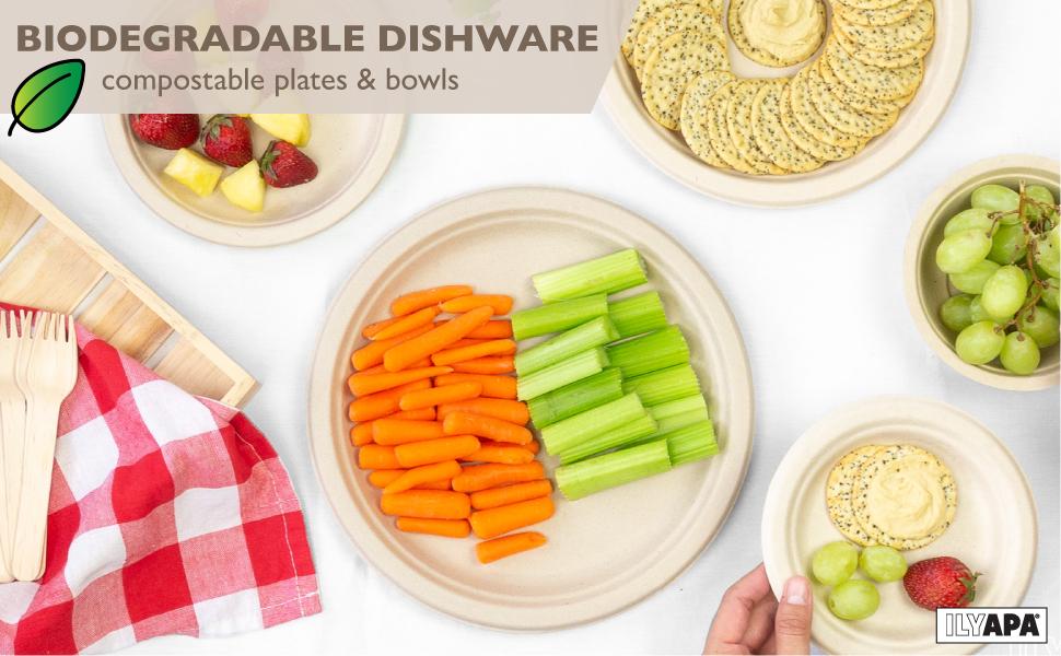 ilyapa biodegradable plats and bowls