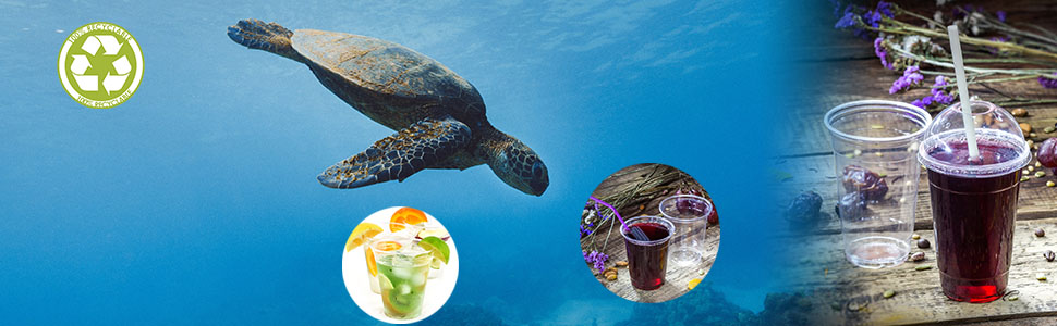 sea turtle, ocean, PET cups, recyclable