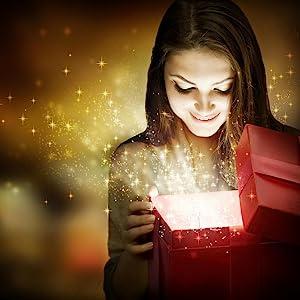 christmas, holiday gift