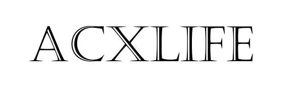 acxlife iphone 11 wallet case