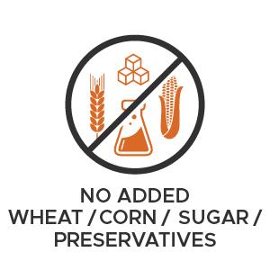 PetHonesty No wheat / corn / sugar / preservatives