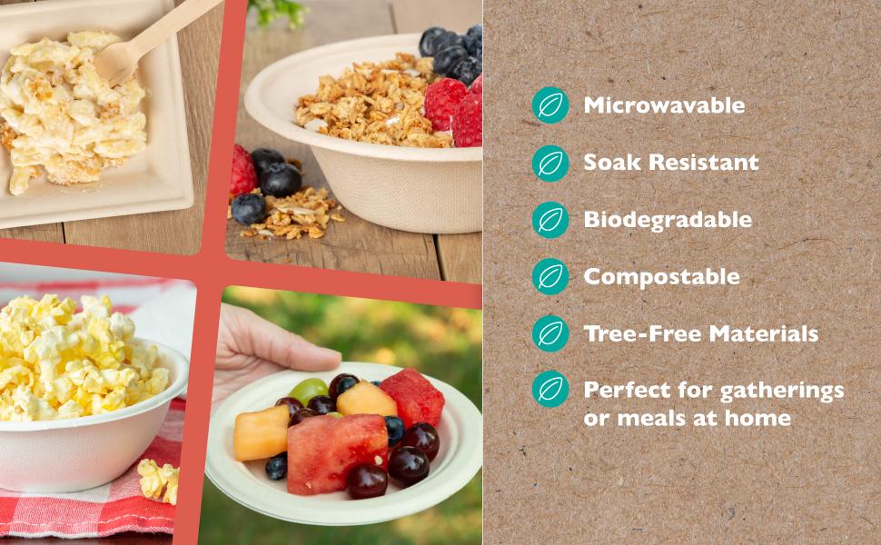 ilyapa biodegradable plates and bowls