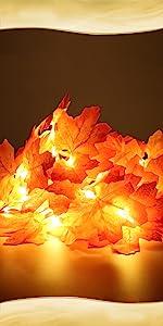 XIYUNTE String Light Artificial Maple Leaf