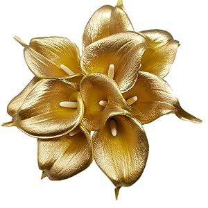 gold calla lily