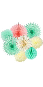 Mint Cream Pink Party Paper Fans Decoration Pom Poms Flowers Kit