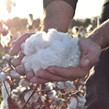 Organic cotton stuffed animals