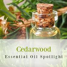cedarwood, essential ois, hair