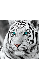 Diamond Painting Tiger