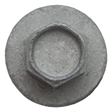 Gray Structural Screw