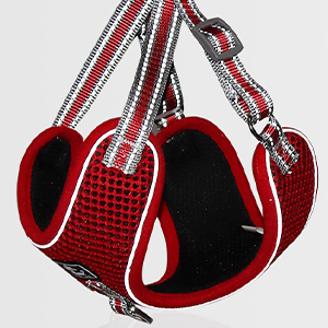 dog harness medium