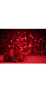 Valentine's Day Photo Backdrops Heart Shaped Red Rose Background
