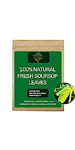 Fresh Soursop leaves, Fresh Soursop tea
