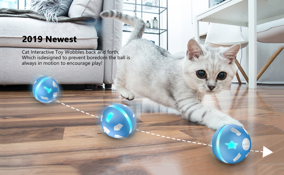 YSCENL 2019 Newest cat ball toy